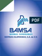 Carpeta-Tecnica-BAMSA.pdf