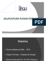 Punho-Tornozelo.pdf