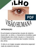8 Olho e Visao Humana
