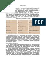LOS_INSECTICIDAS_LECTURA_AVANZADA.pdf