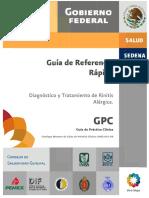 IMSS_041_08_GRR.pdf