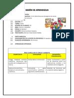 SESION-N12-CIENCIA-Y-AMBIENTE.docx