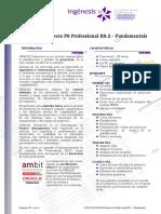 FolletoCurso C03 OraclePrimaveraP6 V061