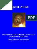 Aula 6- Leishmaniose - Cópia.pdf