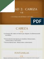 CABEZA I