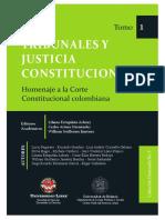 Tribunales y Justicia Constitucional TOMO 1