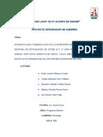MARCO_TEORICO_PIS.docx