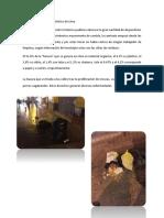 La Basura en El Centro Histórico de Lima
