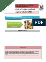 Guión_Metodológico_desarrollo_profesional.docx
