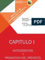 245665611-Proyecto-TRABAJO-Fruta-Deshidratada-2.pptx