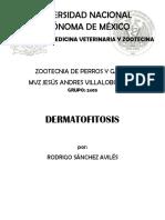 Dermatofitosis En Pequeñas Especies
