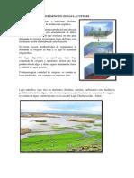 Solubilidad Del Oxígeno en Zonas Lacustres