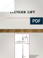 Plunger Lift (Y)