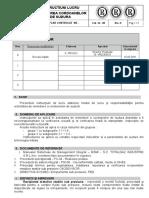 Instructiune Lucru Pentru Remedierea Corpurilor Turnate.doc