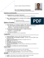 CV technicien en developpement informatique
