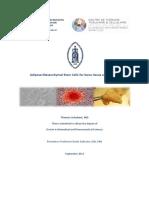 Adipose Mesenchymal Stem Cells for Bone Tissue Engineering Thomas Schubert Denis Dufrane