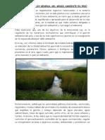 Ley Del Medio Ambiente(resumen)