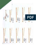 Posicions de La Flauta