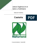 Agricultura Orgánica - castañas