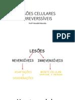 LESÕES_CELULARES_IRREVERSSÍVEIS