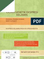 Kajian Genetik Ekspresi Kelamin