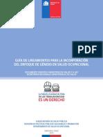 Guia-Lineaminetos-de-Género-en-Salud-Ocupacional-para-SEREMIs-de-Salud.pdf