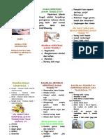 6 Leaflet Hipertensi