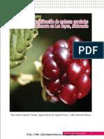 Guía Para La Identificación de Malezas Asociadas Al Cultivo de Zarzamora