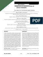 a06v11n3.pdf