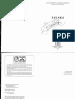 VELÁSQUEZ , LUIS GUILLERMO - Bienes.pdf