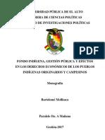 Monografia Fondo Indígena (Corregida) (1)