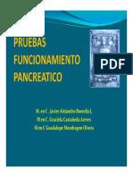 Pruebas de funcion pancreatica.pdf