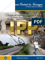 Metodologia IPP
