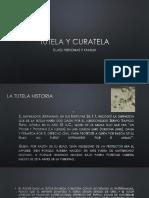 presentacion tutela y curatela.pdf