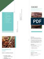 Composicion Quimica Del Grano de Cacao