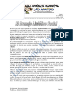 Guias drenaje linfatico facial.doc