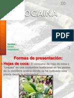 Cocaina.ppt