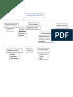 Mapa Conceptual aseguramiento de calidad en alimentos
