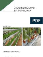 Teknologi Reproduksi Pada Tumbuhan