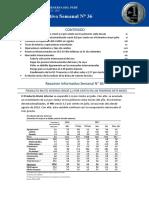 Resumen Informativo 36 2017