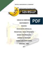 Informe de Flavisur
