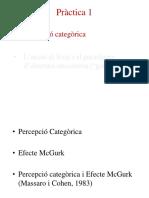 9. Práctica 1 - Percepción Categórica y Efecto McGurk (PPT)