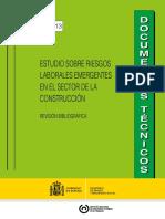 DT 81-1-13 riesgos emergentes meta.pdf