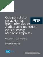 GUIAS2.pdf