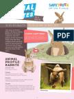 Animal Bites  Newsletter #10