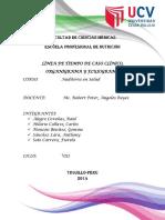 auditoria-en-salud.pdf