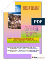 survey company Profile Geobasic Surveys 2009