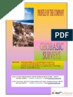 survey company Profile Geobasic Surveys 2009