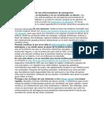 Argumentos a favor de los anticonceptivos de emergencia.docx