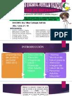Norma Técnica de Salud Para La Atención Integral de Salud Para Las Personas Adultas Mayores Minsa 2006